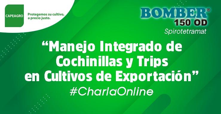 #CharlaOnline: Manejo Integrado de cochinillas y trips en cultivos de exportación – BOMBER 150 OD (Spirotetramat)